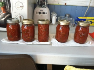 #1 Make our own salsa.