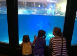 #12. Take Liv and Mia to the aquarium