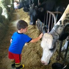 #8 Help Ben Zablocki Meet His Favorite Animal