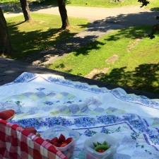 Unaccomplished Goal # 3: Have a Picnic on a Roof